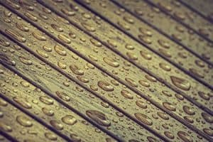 moisture-and-wood